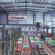 XPO Logistics and Nestlé Unveil UK Digital Distribution Warehouse of the Future